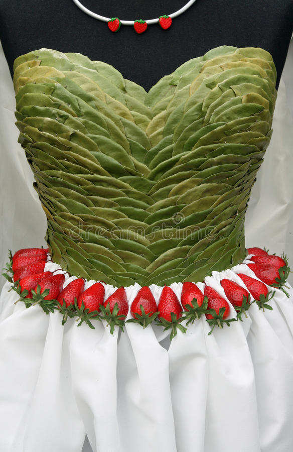 Dress top made from leaves stock photos