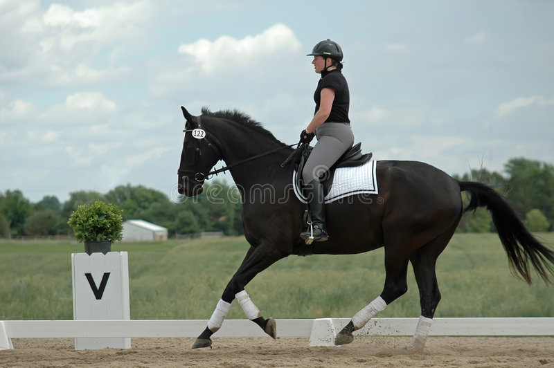 Download Dressage Royalty Free Stock Images - Image: 4415399