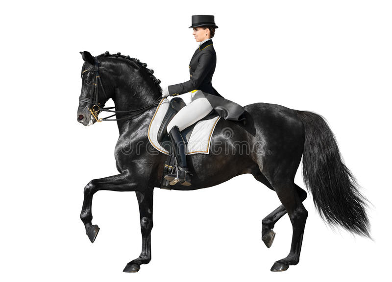 Download Dressage - Cheval Et Femme Noirs Photo stock - Image: 23249756