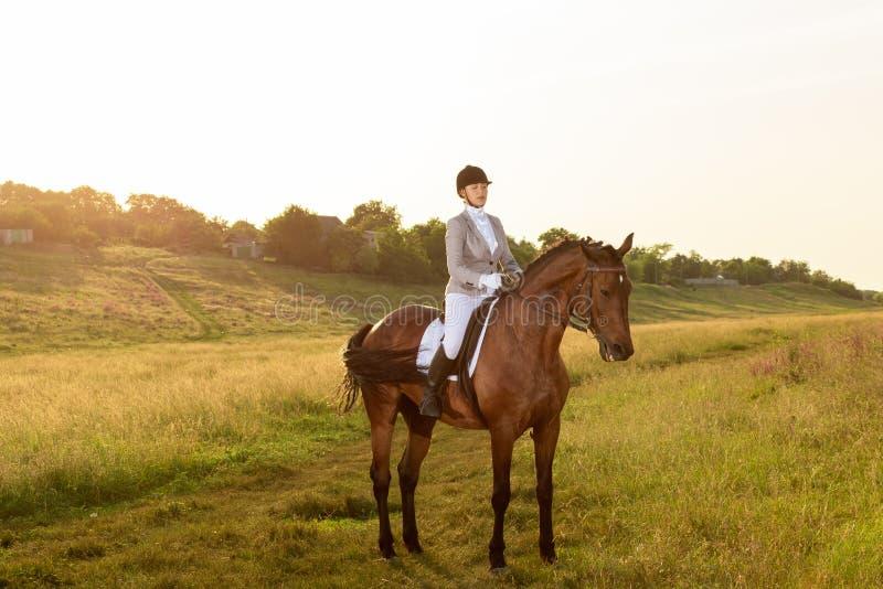 Dressage, das Pferdenspringen und Polopferde und -mitfahrer vector Schattenbilder Pferd der jungen Frau Reitauf Dressurreiten bra lizenzfreies stockbild