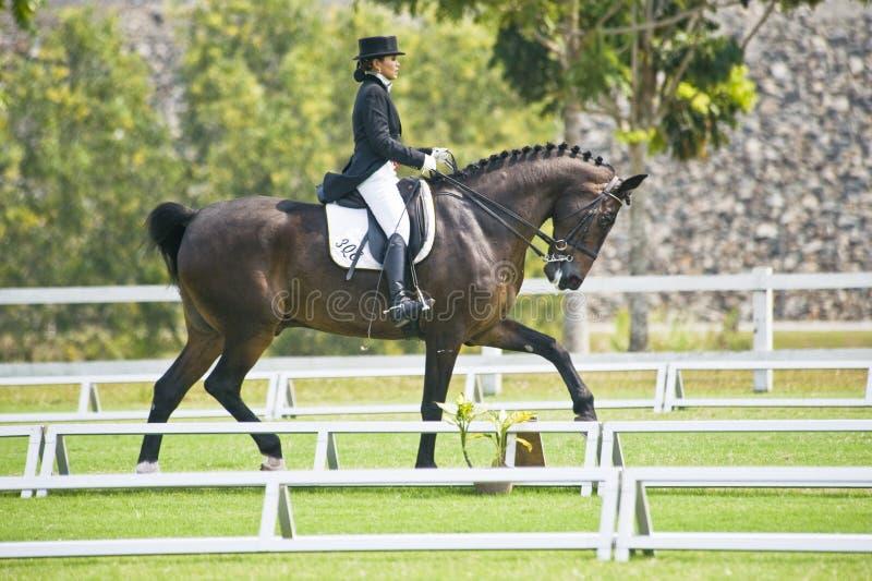 Download Dressage equestre imagem de stock editorial. Imagem de evento - 10057989