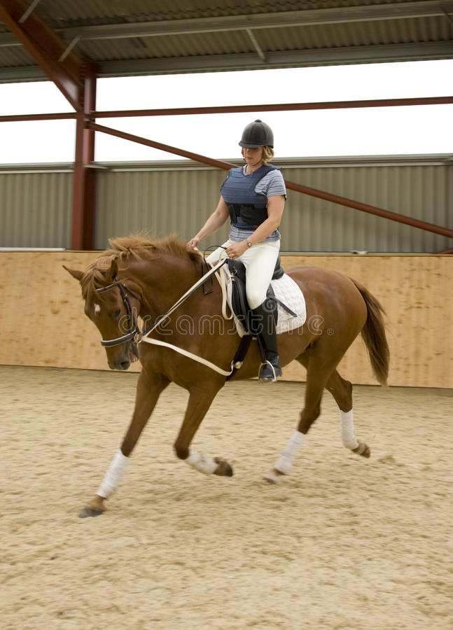 Dressage Horse. Woman riding and schooling dressage horse indoors. The horse is equipped with draw-reigns stock photo