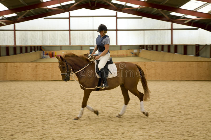 Dressage Horse. Woman riding and schooling dressage horse indoors. The horse is equipped with draw-reigns stock photography