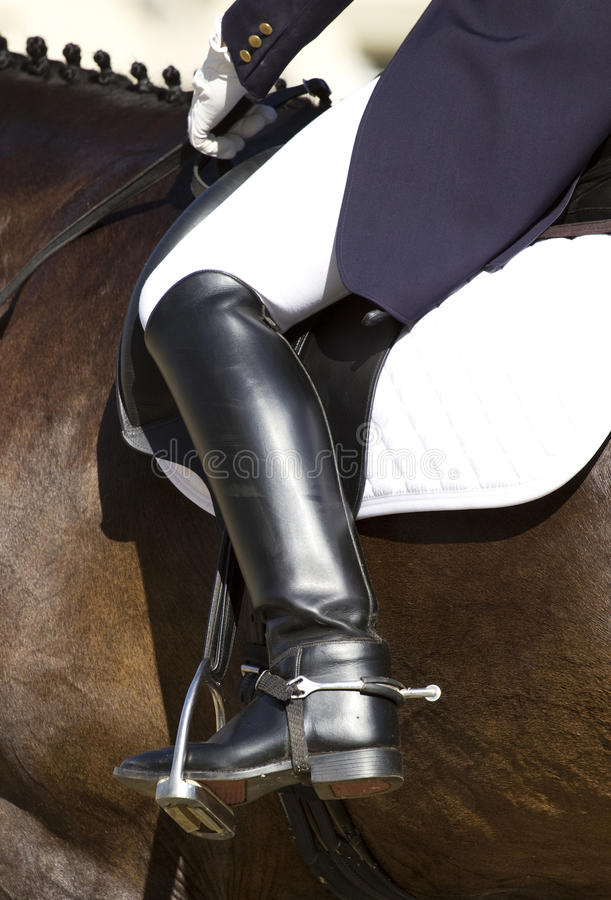 Dressage Horse And Rider Royalty Free Stock Photo