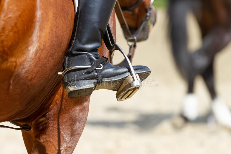 Dressage horse and rider. In competitions stock photo