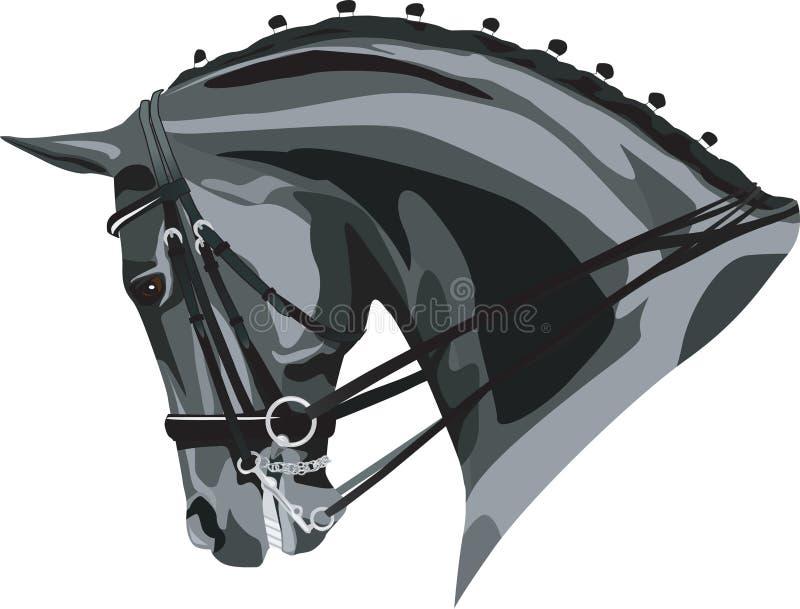 Dressage Koni głowa royalty ilustracja