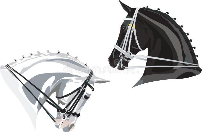 Dressage Koni głowy Czarny I Biały ilustracja wektor