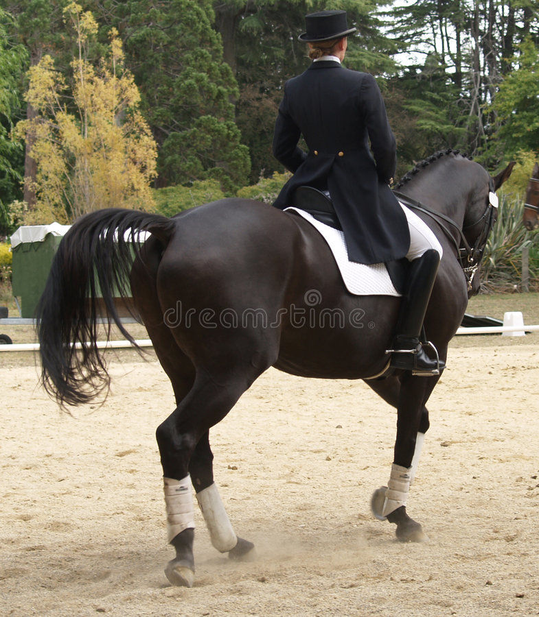 Dressage Rider. A Dressage rider in action. Taken at the Horse of the Year 2007 Hastings New Zealand royalty free stock image
