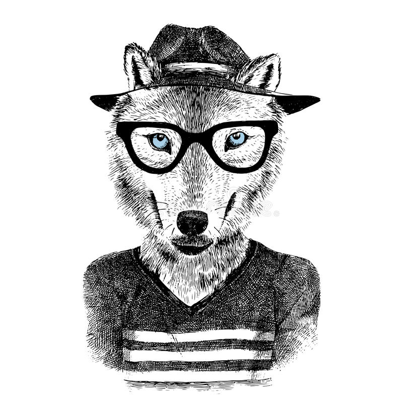 Dressed up wolf. Dressed up hand drawn wolf hipster stock illustration