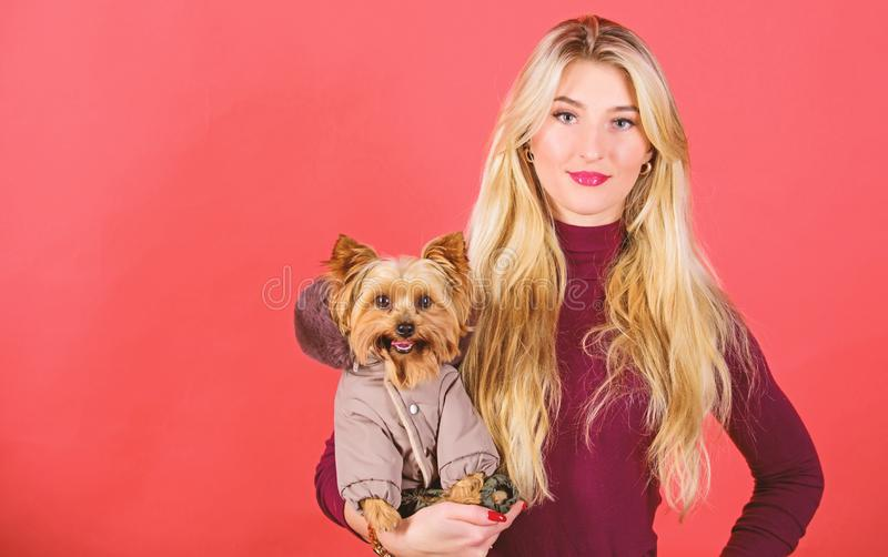 Dressing dog for cold weather. Which dog breeds should wear coats. Girl hug little dog in coat. Woman carry yorkshire. Terrier. Make sure dog feel comfortable stock photo