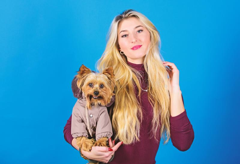 Dressing dog for cold weather. Which dog breeds should wear coats. Woman carry yorkshire terrier. Dogs need clothes stock images
