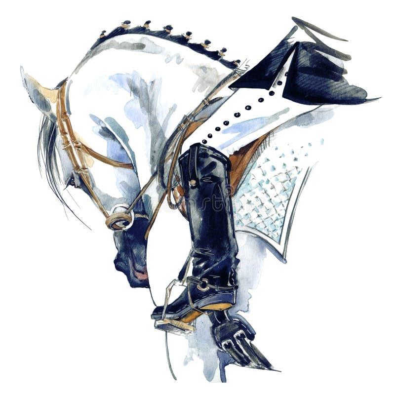 Dressurreitensportpferd mit Reiter Aquarellpferdeillustration stock abbildung