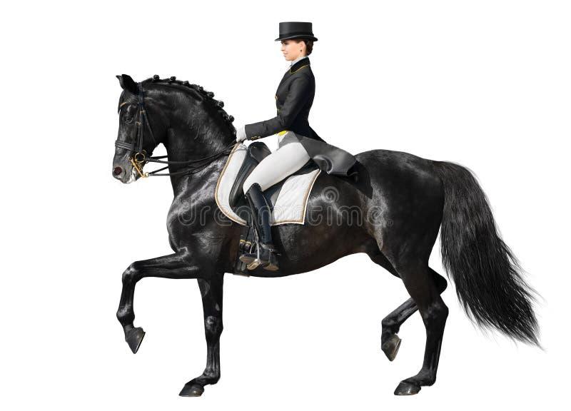 Dressuur - zwarte paard en vrouw royalty-vrije stock afbeelding