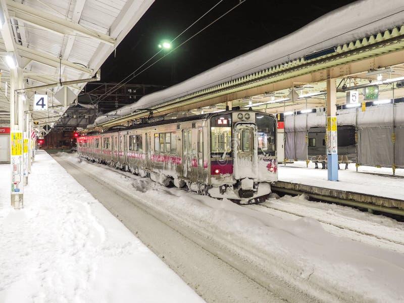 Drev i snön fotografering för bildbyråer