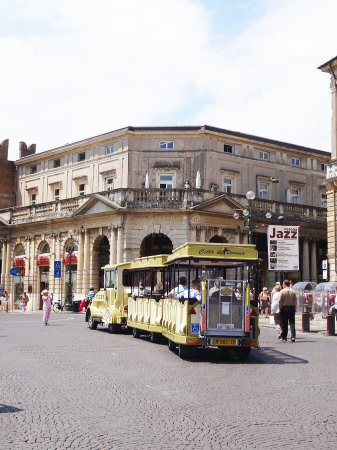 Drev i Verona royaltyfria bilder