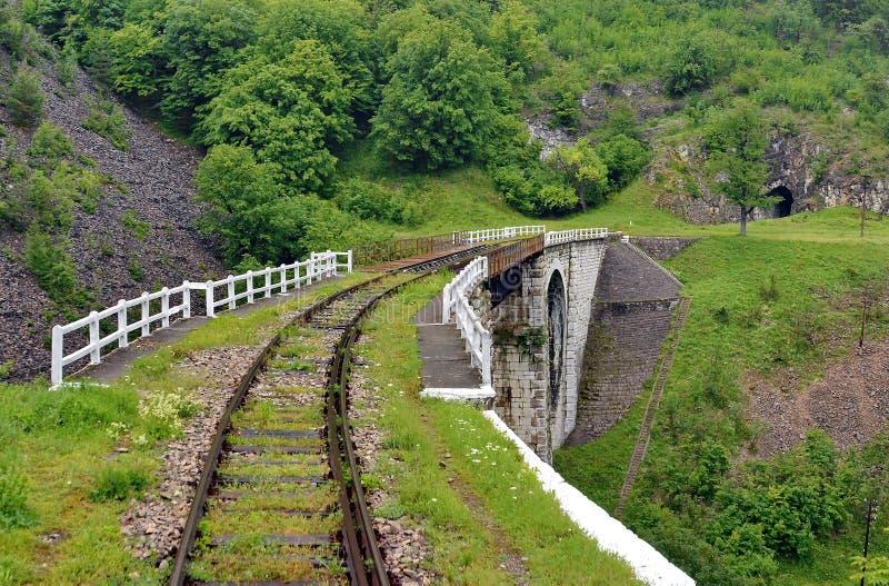 Drev järnväg Rridge i Rumänien arkivbild
