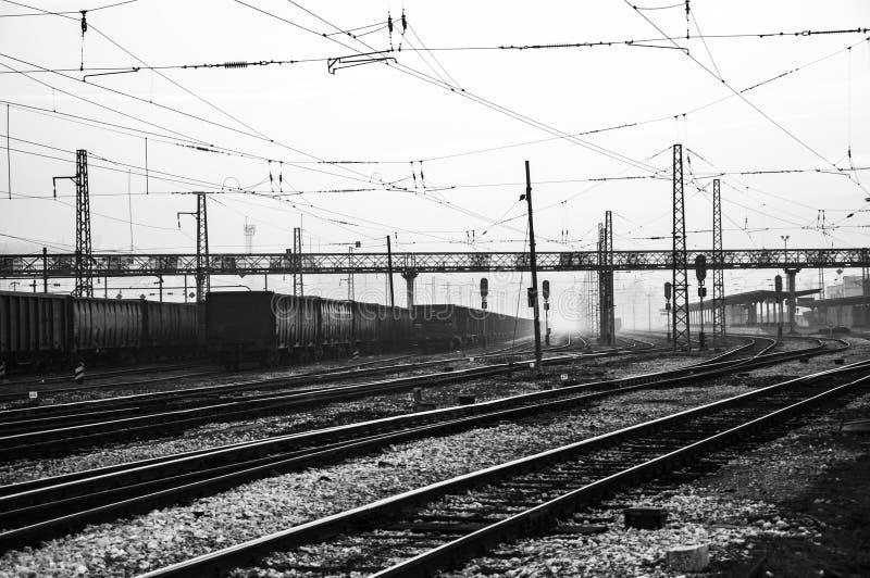 Drev och järnvägsstation royaltyfri fotografi