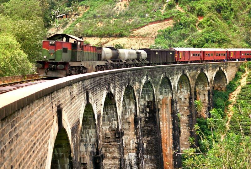 Drev på den Demodara för nio bågar bron royaltyfria foton