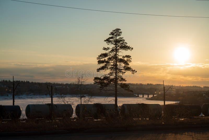 Drevlast i järnväg på en solnedgång royaltyfria foton