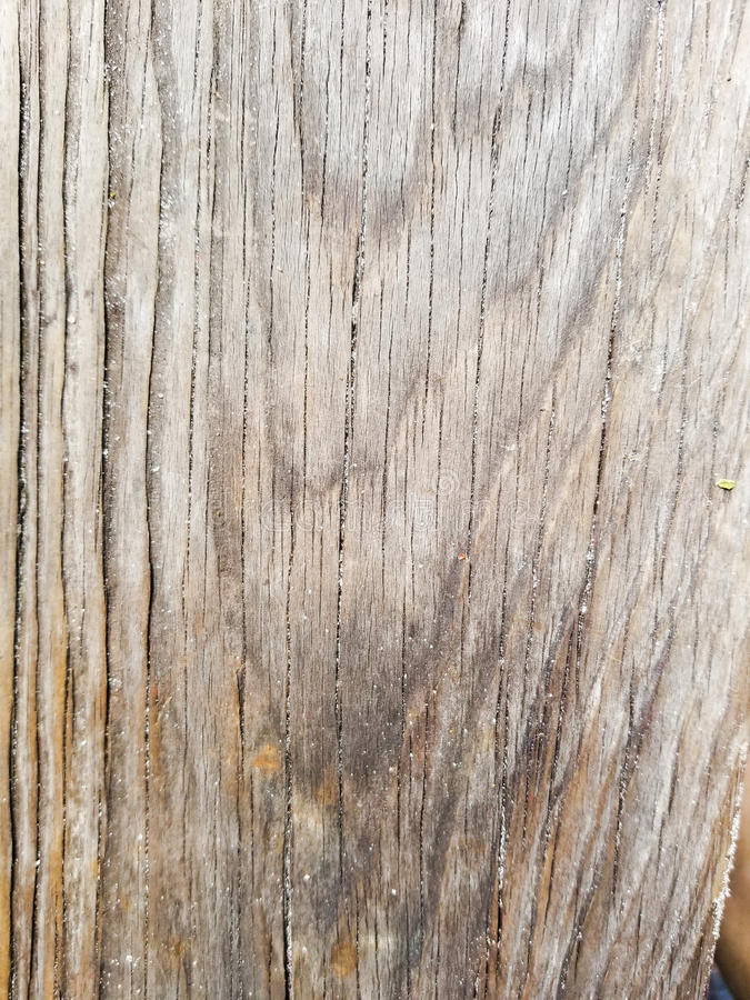Drewna adry tekstura obrazy royalty free