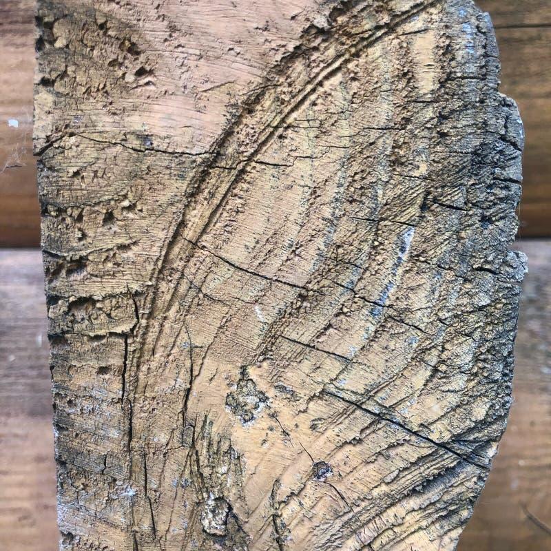 Drewna brązu tekstury deskowy tło z cięciem fotografia stock