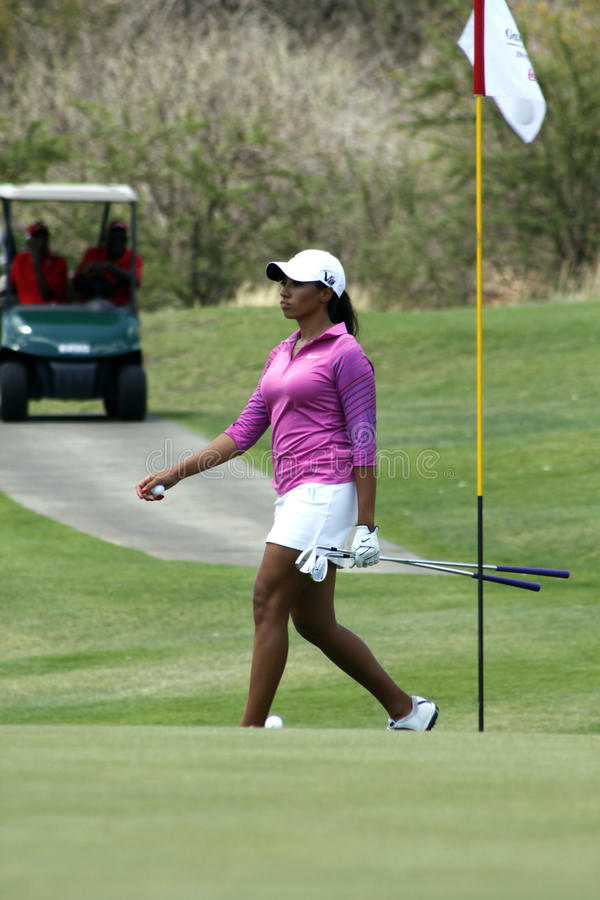 DREWNA CHEYENNE PRO golfista obrazy royalty free