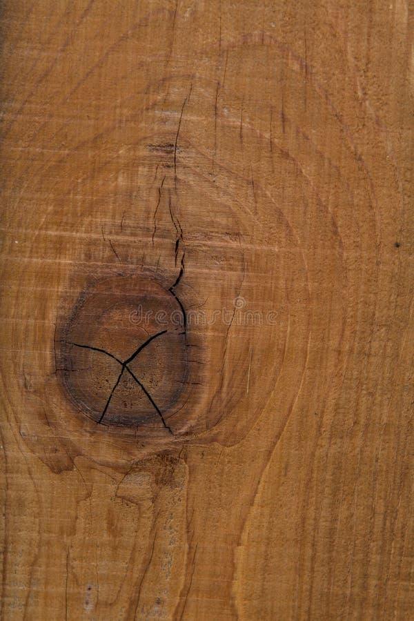 Drewna ogrodzenia poczta z kępki teksturą fotografia royalty free