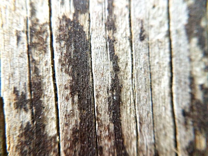 Drewniana ławka obrazy stock