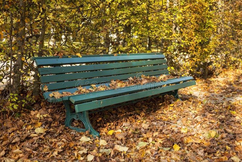 Drewniana ławka w Herrenhausen ogródach zdjęcia stock