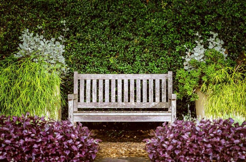 Drewniana ławka w ogródzie otaczającym krzakami obraz stock