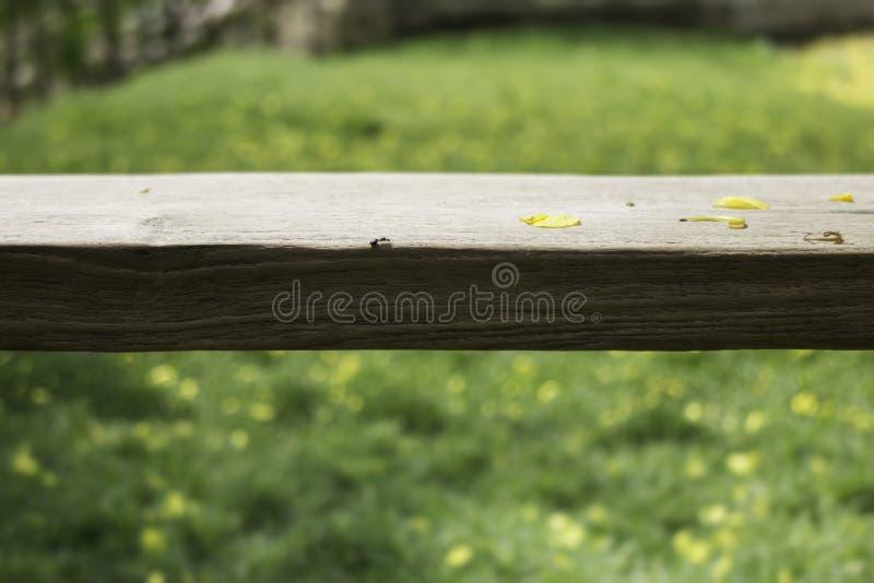 Drewniana ławka w outdoors ogródzie w lecie zdjęcie stock