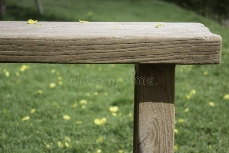Drewniana ławka w outdoors ogródzie w lecie obraz royalty free
