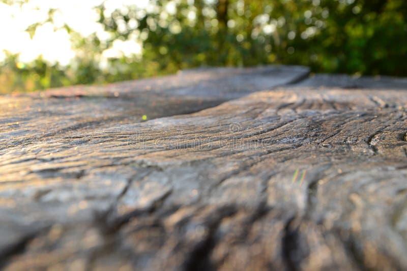 Drewniana ławka w powabnym miejscu zdjęcia stock