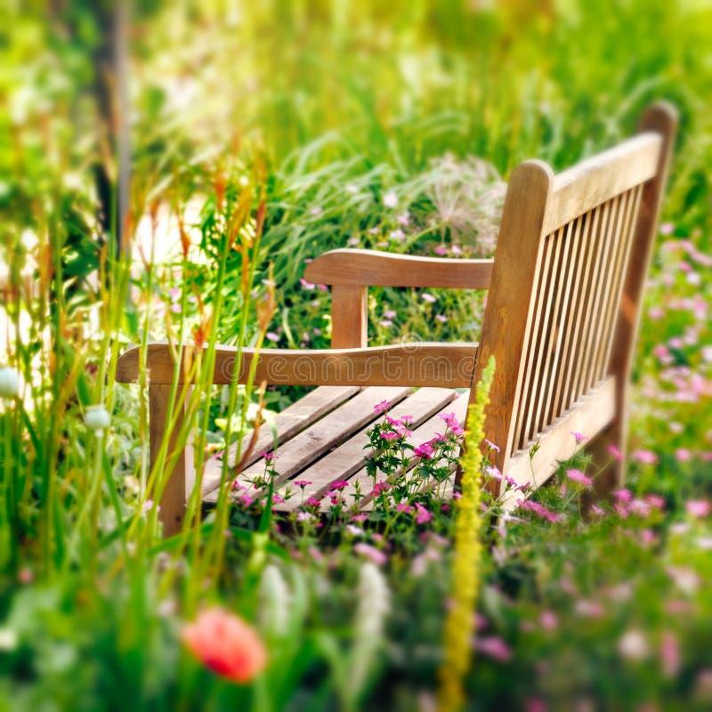 Drewniana ławka w wildflower ogródzie. zdjęcie stock