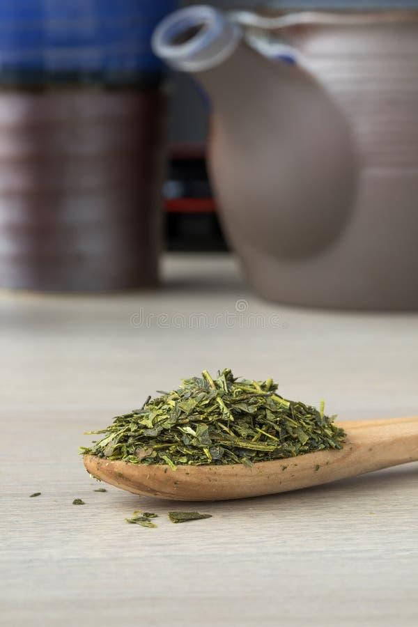 Drewniana łyżka z Japońską zieloną herbatą obraz stock