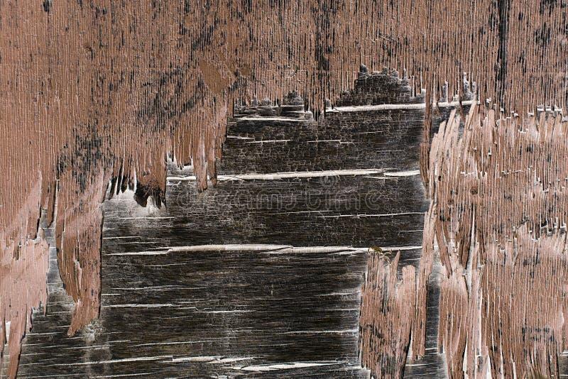 Drewniana ściana z obieranie farbą Farby obierania tynku ściany stary zdjęcia stock