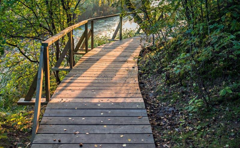 Drewniana ścieżka w Kemeri parku narodowym, Latvia zdjęcia royalty free