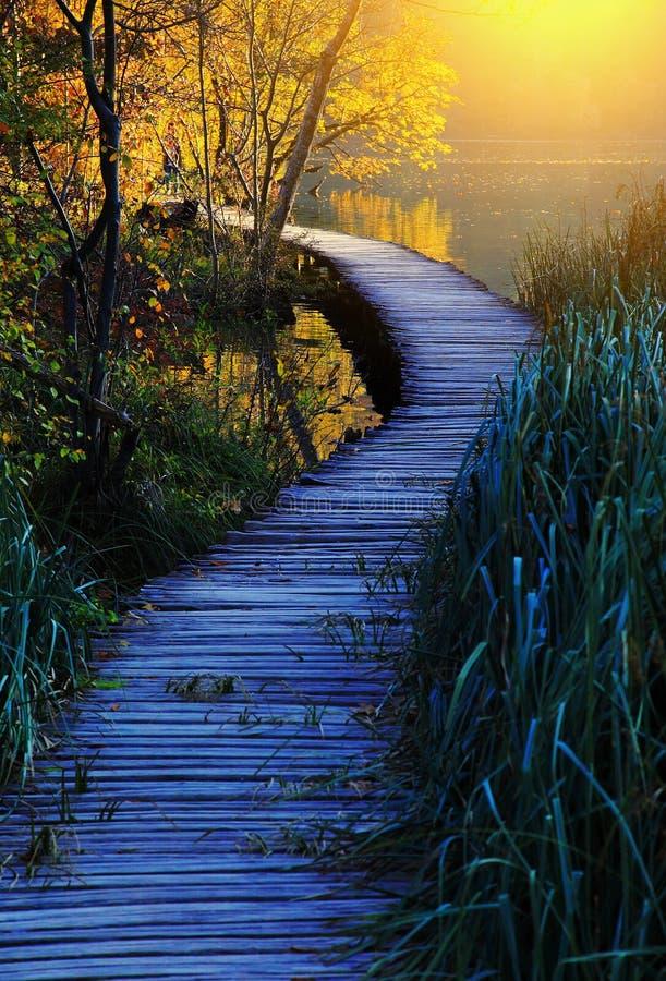 Drewniana ścieżka w Plitvice jezior Plitvicka jezera parku narodowym, Chorwacja zdjęcie royalty free