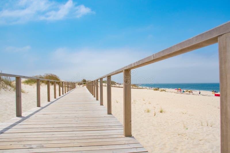 Drewniana ścieżka z Atlantyckim widokiem na ocean zdjęcia royalty free