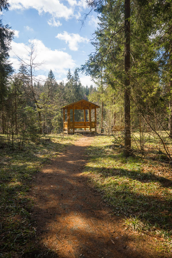Drewniana ścieżka z cieniami od drzew prowadzi alkierz fotografia stock