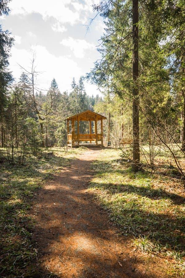 Drewniana ścieżka z cieniami od drzew prowadzi alkierz zdjęcia royalty free