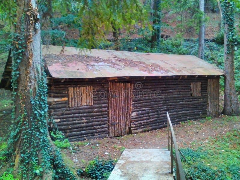 Drewniana chałupa w lesie obrazy royalty free