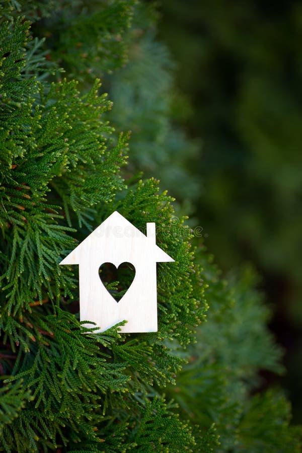 Drewniana domowa ikona z dziurą w formie otaczającej zielonym tui conifer serce rozgałęzia się plenerowego zdjęcia stock