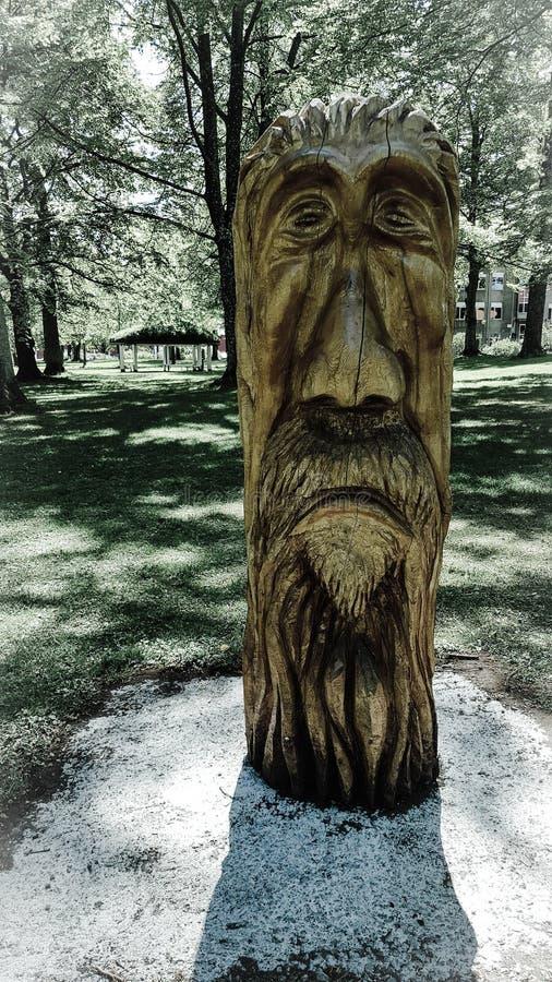 Drewniana drzewna twarz fotografia royalty free