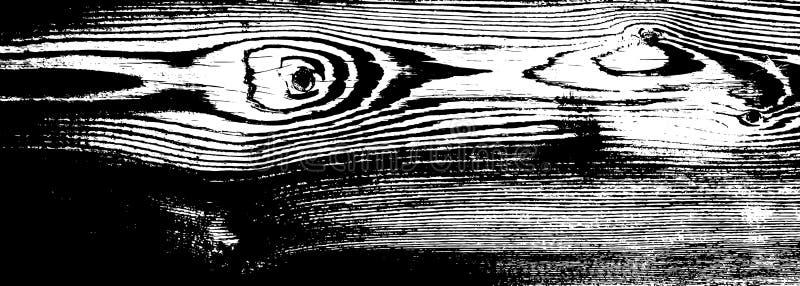 Drewniana grunge tekstura Naturalny drewniany odosobniony tło również zwrócić corel ilustracji wektora ilustracji