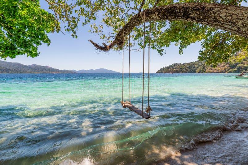 Drewniana hu?tawka na drzewie w tropikalnym morzu obraz stock