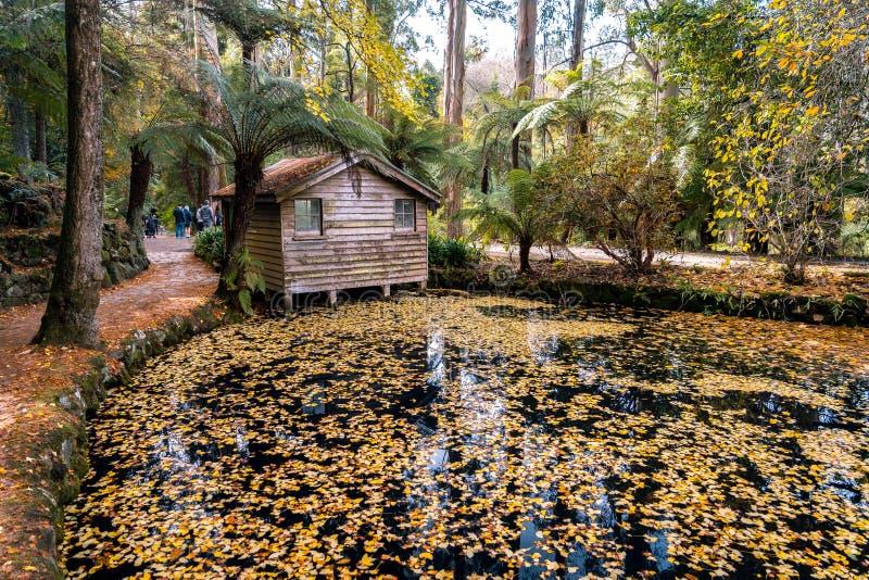 Drewniana kabina w Alfred Nicholas ogr?dach fotografia royalty free