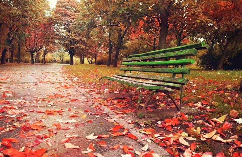 Drewniana kanapa w fantazi jesieni sezonie zdjęcie stock
