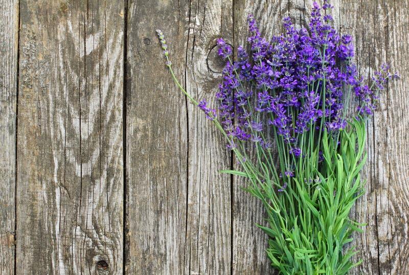 Drewniana lawenda Kwitnie tło zdjęcie stock