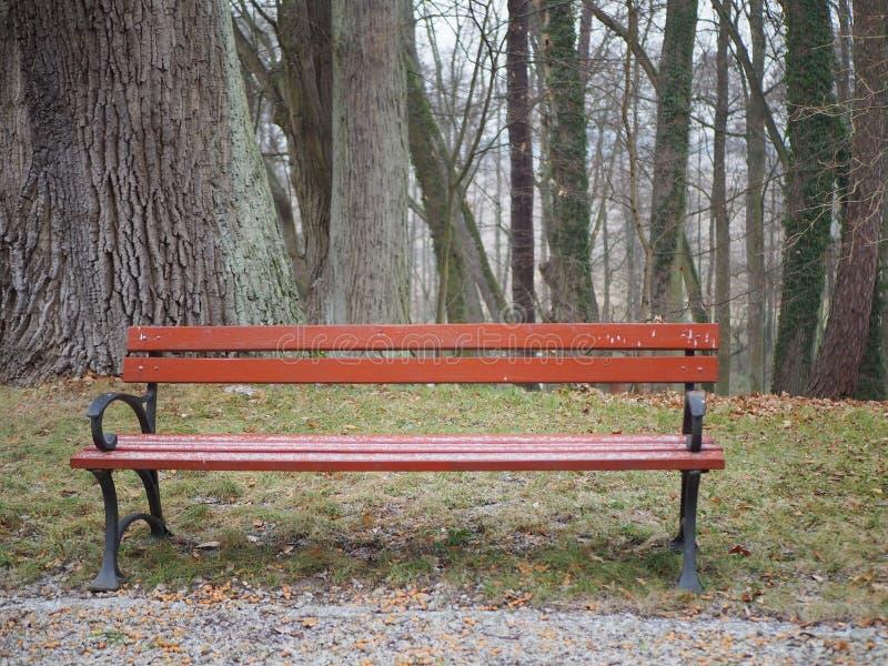 Drewniana parkowa ławka w jesieni pustej, samotny, obraz stock